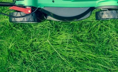 Unkrautentfernung und Gartenarbeit